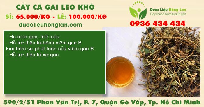 Cây Cà Gai Leo Khô